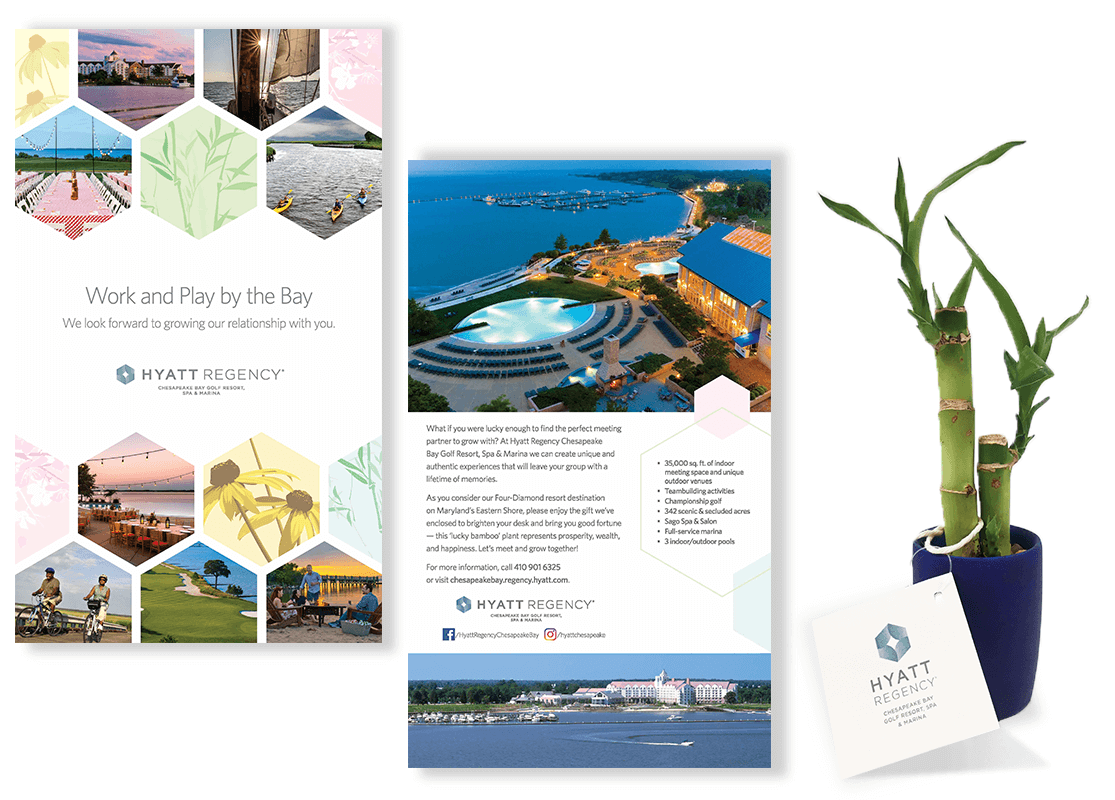Hyatt Regency Chesapeake Bay 3D Bamboo Mailer